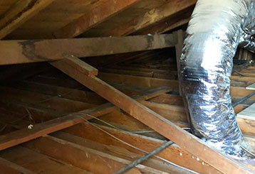 Crawl Space Repair | Attic Cleaning Oakland, CA